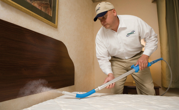 how to hire a bed bug exterminator